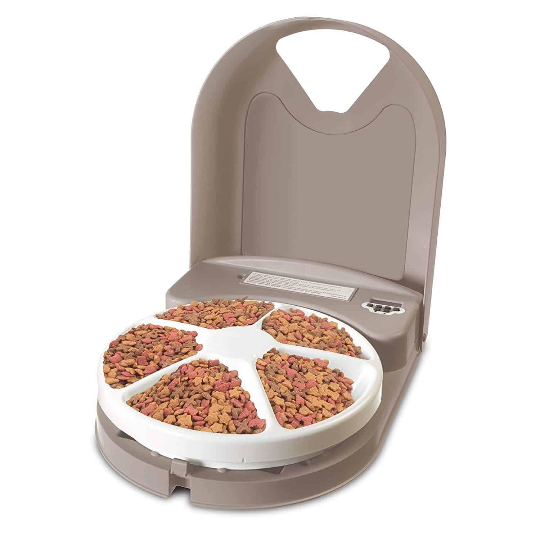automatic dog feeder